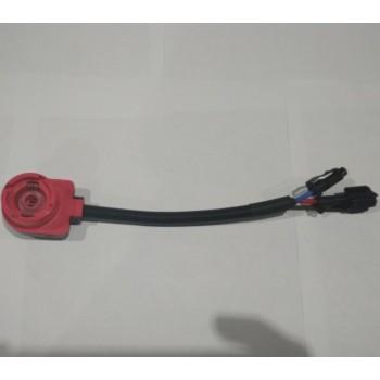 провода от блока к лампе D2S